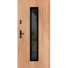 Drzwi zewnętrzne stalowe WIKĘD GLASS DESIGN GD01A