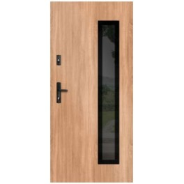 Drzwi zewnętrzne stalowe WIKĘD GLASS DESIGN GD01C